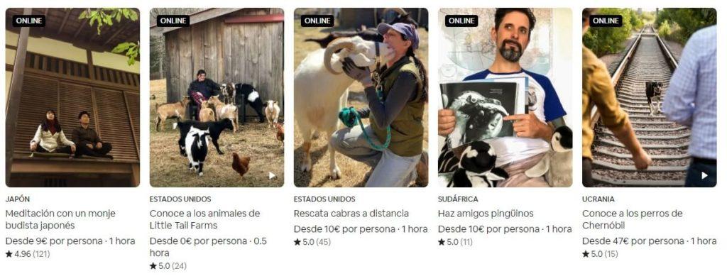 Airbnb Experiencias Online - Bichito viajero