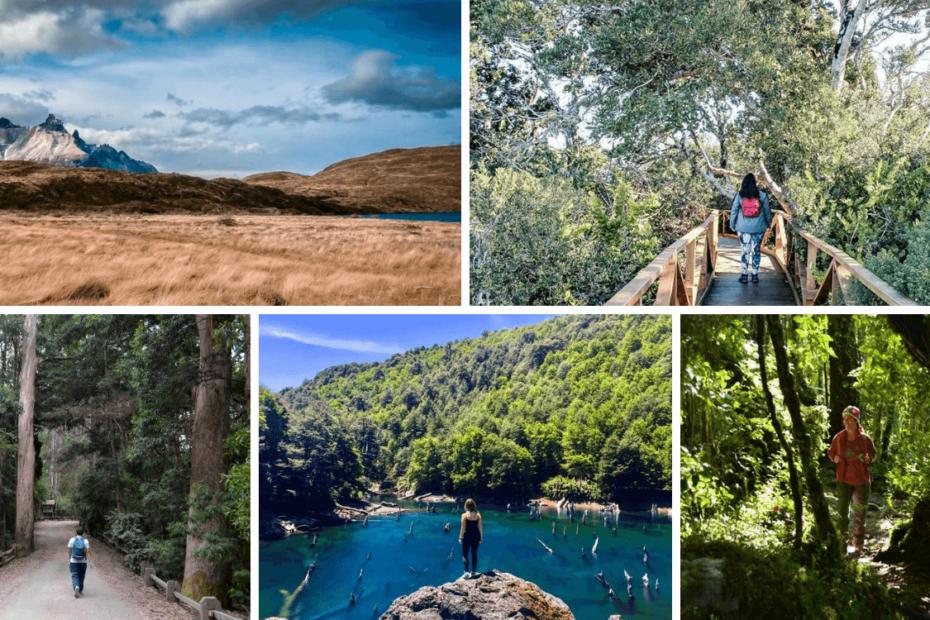 Blogueros chilenos recomiendan parques nacionales en Chile - Bichito Viajero