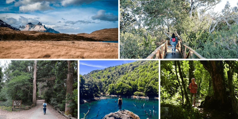 Blogueros chilenos recomiendan parques nacionales en Chile – Bichito Viajero