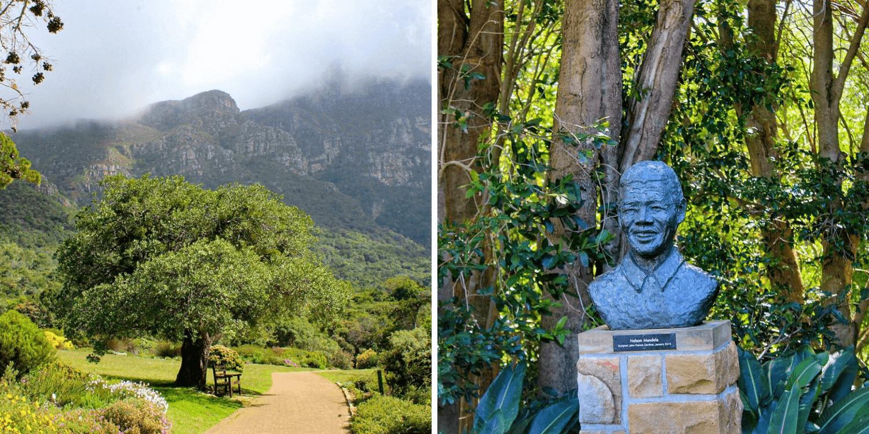 Jardín Botánico Nacional de Kirstenbosch - Bichito Viajero