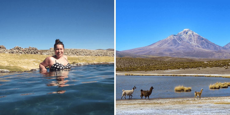 Parque Nacional Volcán Isluga, región de Tarapacá - Bichito Viajero