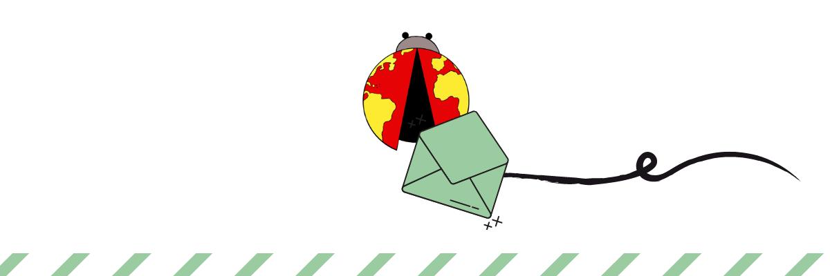 Boletin newsletter Bichito viajero
