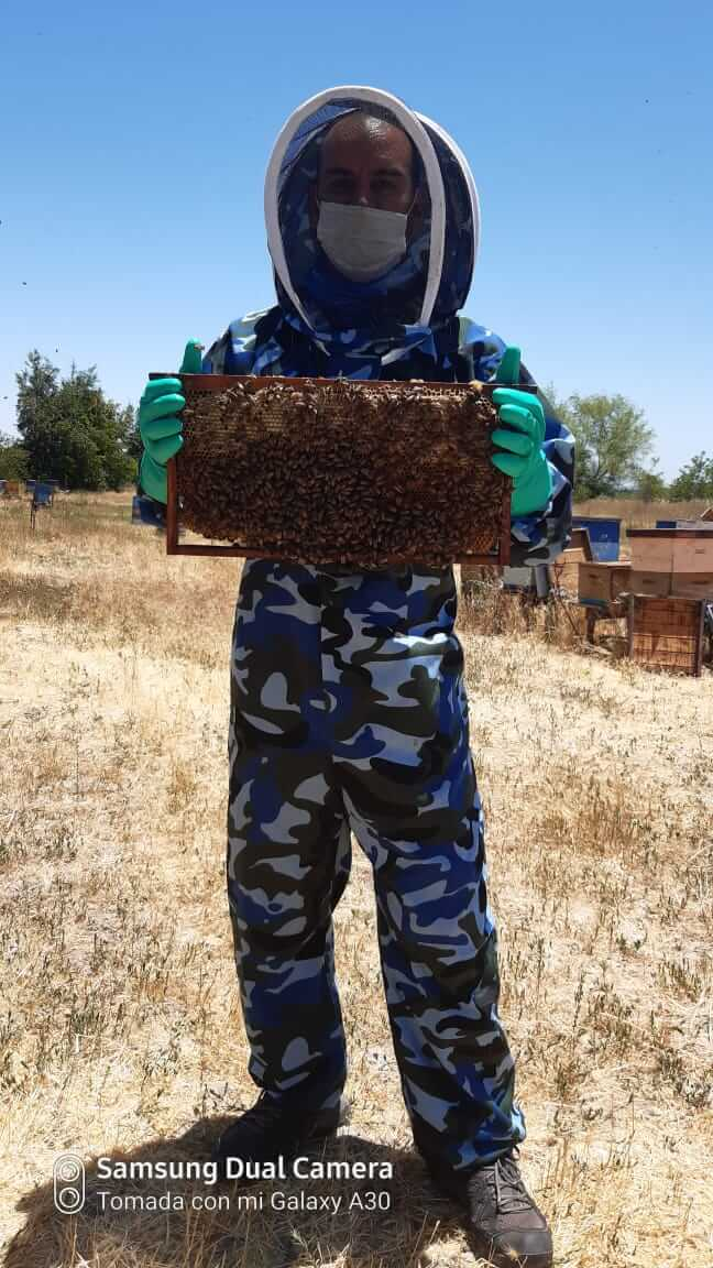 colmenares monimony casa de la miel