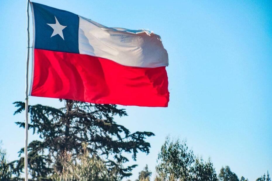 permisos y viajes interregionales en Chile - Bichito viajero