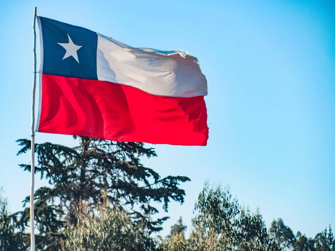 permisos y viajes interregionales en Chile – Bichito viajero